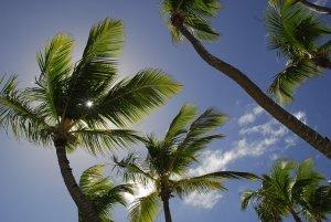 summer health tips in Elkridge MD